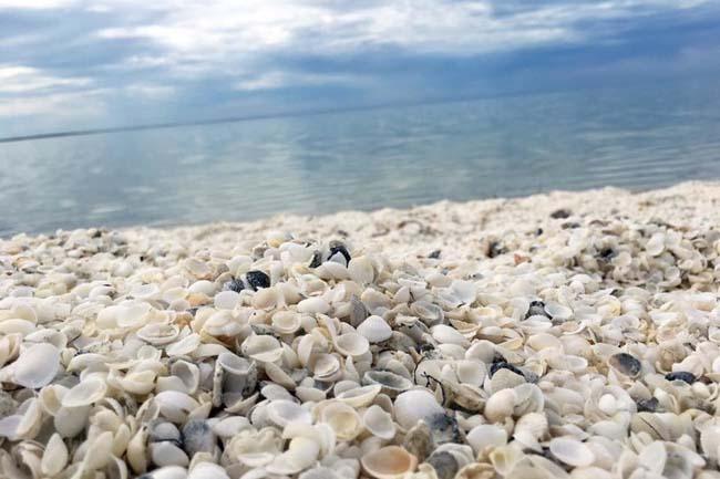 12 bãi biển độc lạ trên thế giới khiến ai cũng phải thốt lên bất ngờ - 7