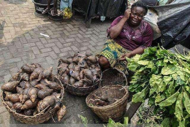 Hốt hoảng trước những thực phẩm nhìn thôi đã thấy sợ ở chợ châu Phi - 2