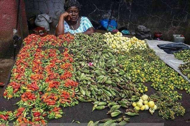 Hốt hoảng trước những thực phẩm nhìn thôi đã thấy sợ ở chợ châu Phi - 10