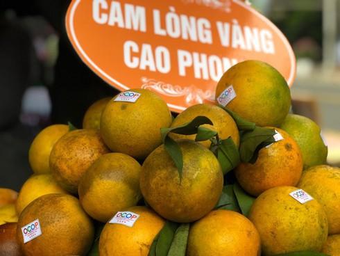"""Cam ngoại """"tấn công"""", cam Cao Phong giảm giá chính vụ - 1"""
