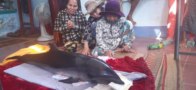 """Bắt được cá voi, ngư dân tưởng trúng """"cá lạ"""" nên mang ra chợ bán - 2"""