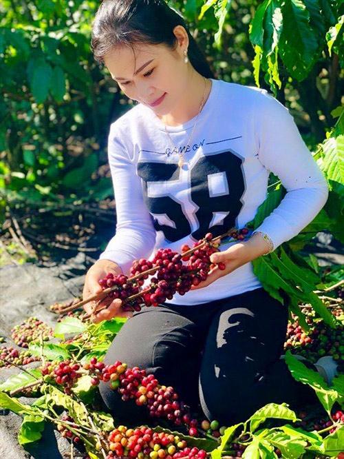 Thương hiệu cà phê Quỳnh Anh - 20 năm dành hết tâm huyết cho hạt cà phê - 2