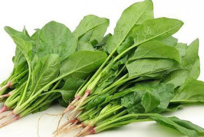 """Những loại rau là """"thần dược"""" cho người bị đau dạ dày - 2"""