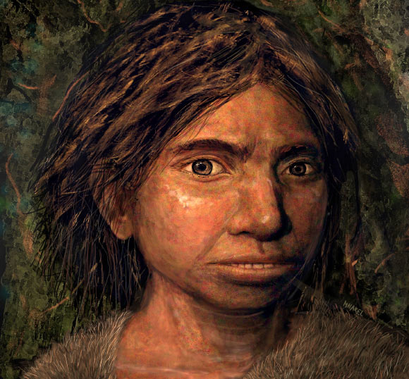 """Sốc với """"sinh vật mới"""" khiến 8 loài người khác tuyệt chủng - 3"""