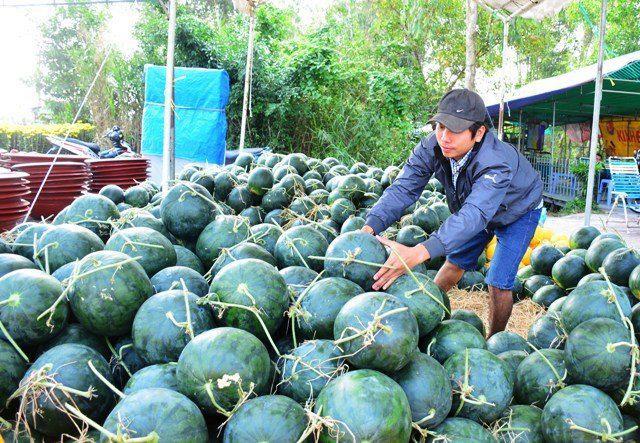"""Trung Quốc là đối tác thương mại """"trăm tỷ USD"""" duy nhất của Việt Nam - 1"""