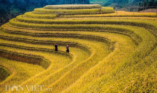 Những hình ảnh tuyệt đẹp về phong cảnh, thiên nhiên Việt Nam - 7