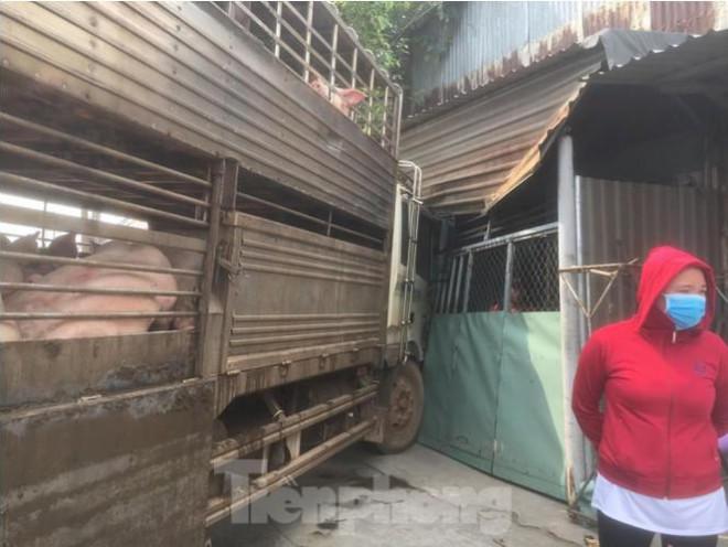 Xe chở 50 con heo tông vào nhà dân khiến quốc lộ 13 kẹt cứng 2km - 2