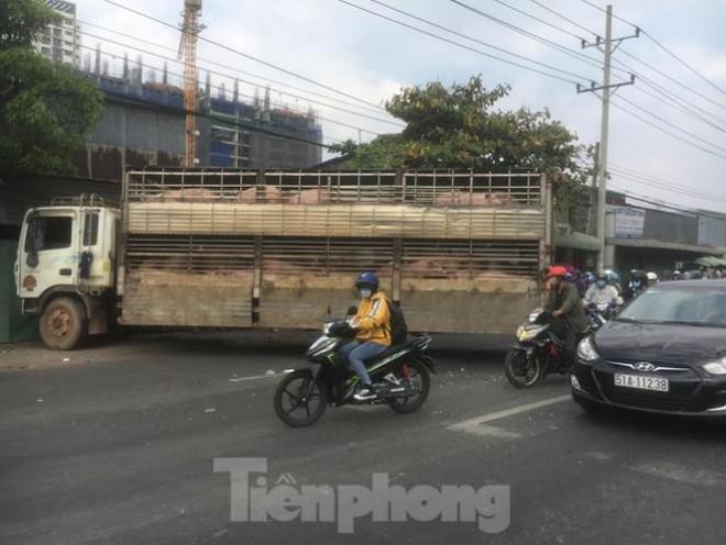 Xe chở 50 con heo tông vào nhà dân khiến quốc lộ 13 kẹt cứng 2km - 4