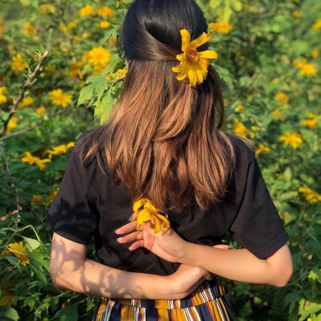 Team Hà Nội đâu cần đến Đà Lạt xa xôi, Ba Vì cũng sắp sửa bước vào mùa hoa dã quỳ rồi! - 4