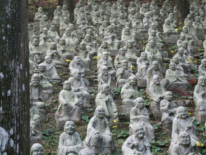 Chiêm ngưỡng cây phong 400 tuổi ở Nhật Bản - 6