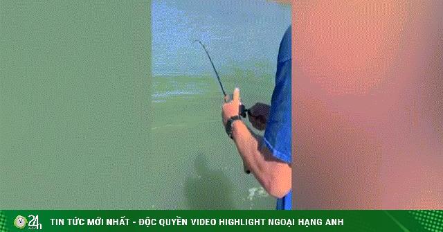Video: Tưởng câu được cá khủng, lôi lên mới biết là loài ăn thịt máu lạnh