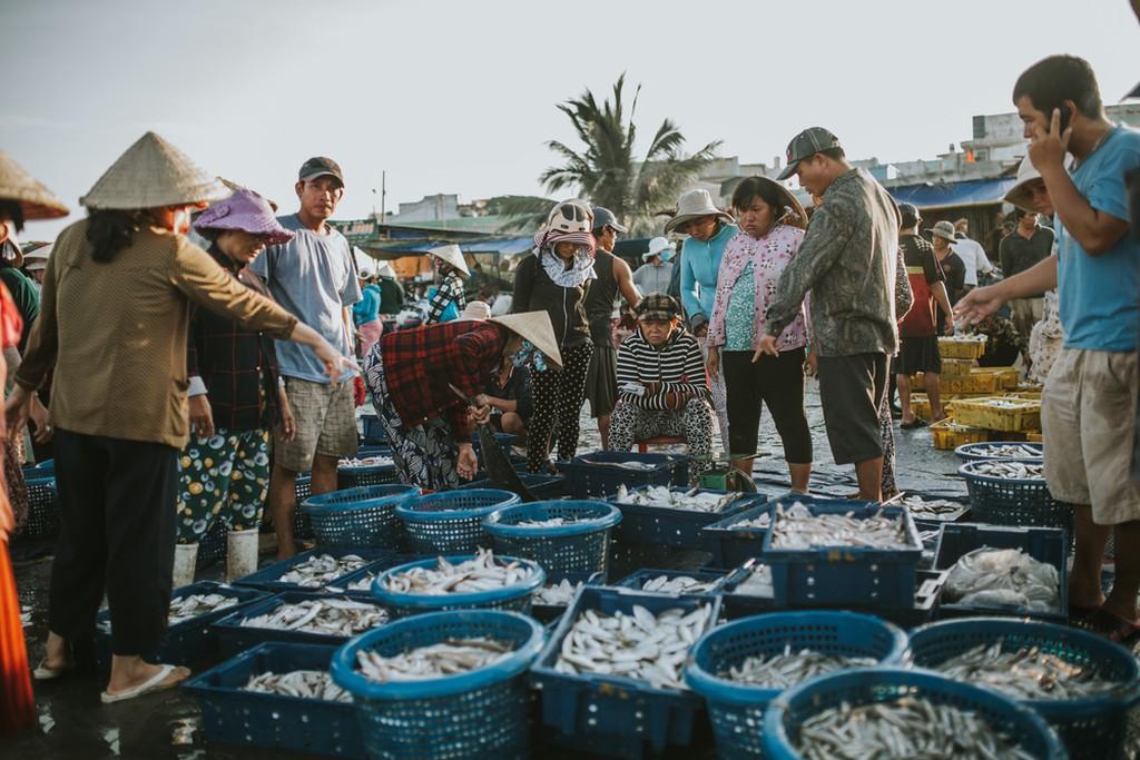 Những điểm đến đẹp nhất Việt Nam trong mắt du khách nước ngoài - 2