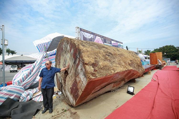 Ngỡ ngàng khúc gỗ cẩm lai nguyên sơ được rao bán 10 tỷ đồng ở Hà Nội - 1