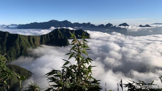 """Lên Sapa """"săn mây"""" trên dãy núi Ngũ Chỉ Sơn"""