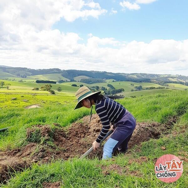 Tiểu thư Hà Thành bỏ tất cả sự nghiệp để lấy chồng Tây, giờ chăn bò bên Úc - 4