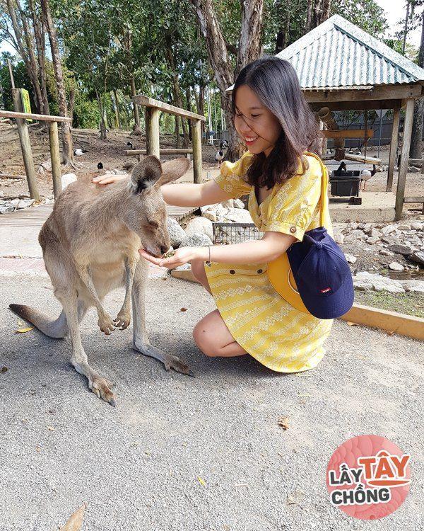 Tiểu thư Hà Thành bỏ tất cả sự nghiệp để lấy chồng Tây, giờ chăn bò bên Úc - 7