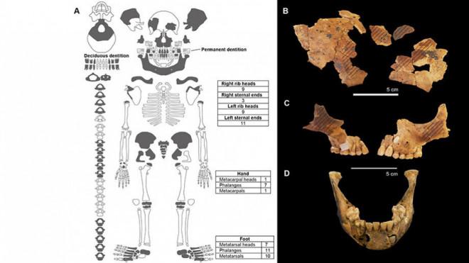 """Bí ẩn mộ cổ 8.000 tuổi của """"người tí hon"""" không tay - 2"""