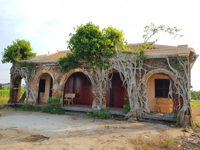 Ngôi đình 100 tuổi 'độc nhất vô nhị' ở miền Tây có 2 cây bồ đề mọc trên mái - 4
