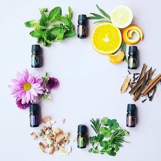 10 loại tinh dầu giúp trẻ hóa da toàn diện, giúp bạn mãi thanh tân - 1