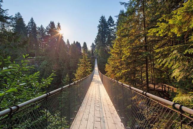 Du lịch - Những cây cầu nguy hiểm khiến mỗi bước chân đều run rẩy - 6