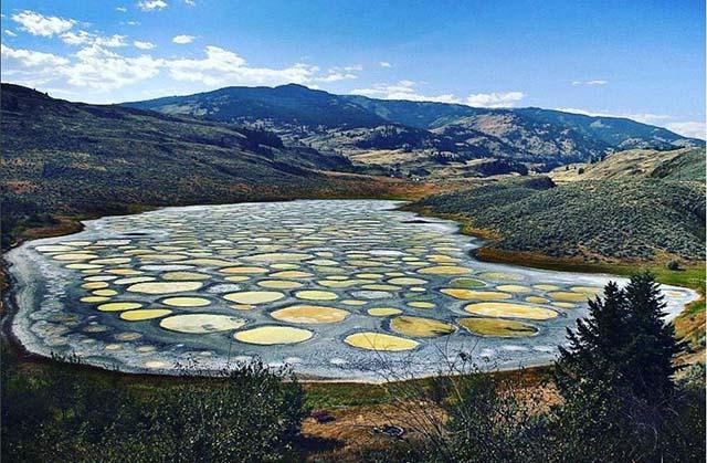 Những vòng tròn kỳ lạ trên hồ nước, được người dân tin rằng có tác dụng chữa bệnh - hình ảnh 1