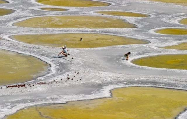 Những vòng tròn kỳ lạ trên hồ nước, được người dân tin rằng có tác dụng chữa bệnh - hình ảnh 6