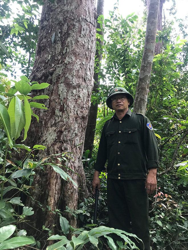 Chuyện ít biết về những người ăn ngủ ở rừng sâu, chặn đứng… tiếng máy cưa của lâm tặc - hình ảnh 3