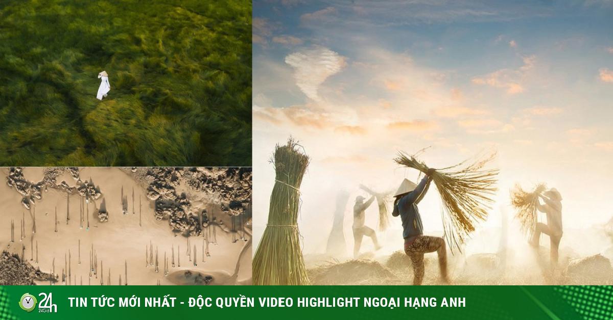 Chiêm ngưỡng 4 khoảnh khắc của Việt Nam lọt chung kết giải ảnh xuất sắc nhất năm