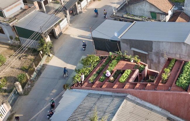 """Nhà """"ruộng bậc thang"""" mái phủ kín rau xanh của vợ chồng Việt được báo Mỹ hết lời khen - 1"""
