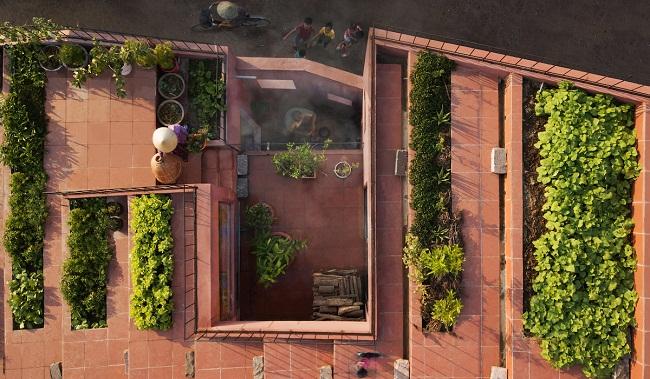 """Nhà """"ruộng bậc thang"""" mái phủ kín rau xanh của vợ chồng Việt được báo Mỹ hết lời khen - 4"""