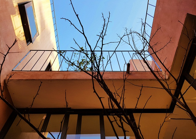 """Nhà """"ruộng bậc thang"""" mái phủ kín rau xanh của vợ chồng Việt được báo Mỹ hết lời khen - 7"""
