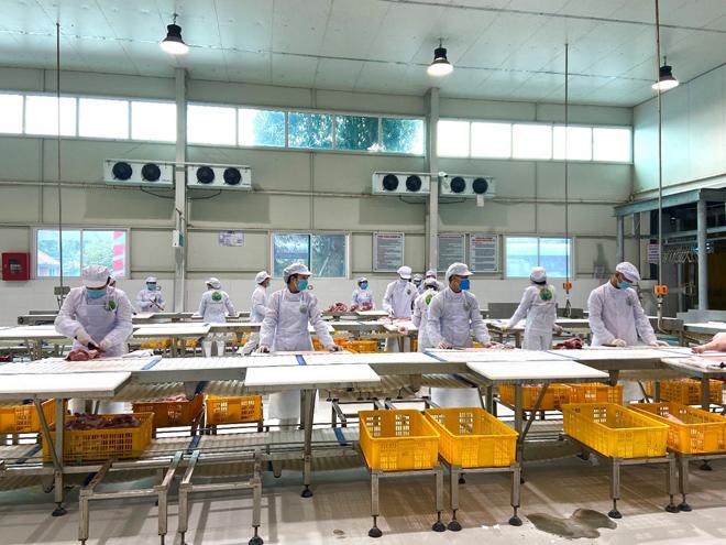 MM Mega Market khai trương trạm trung chuyển thịt heo đầu tiên tại miền Bắc - 3