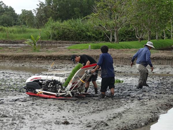 Ra mắt Viện nghiên cứu nông nghiệp Yanmar, Việt Nam - 2
