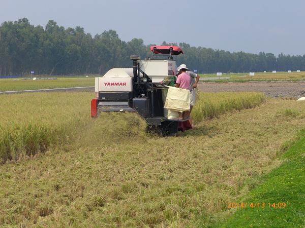 Ra mắt Viện nghiên cứu nông nghiệp Yanmar, Việt Nam - 3