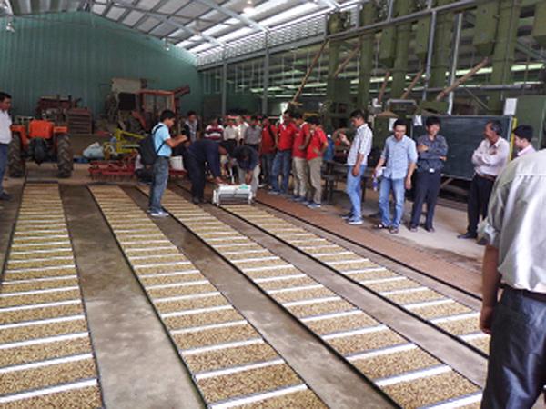 Ra mắt Viện nghiên cứu nông nghiệp Yanmar, Việt Nam - 5