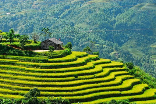 Xẻ dọc miền Bắc Việt Nam - những miền tiên cảnh không thể bỏ lỡ - 2