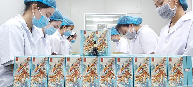 Gốc Việt – Nâng tầm giá trị thảo mộc Việt Nam - 5