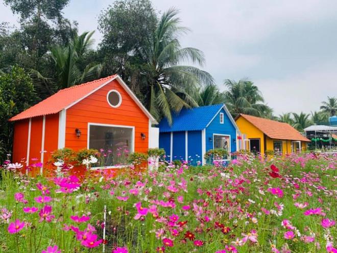 """Địa điểm check-in Tết Dương lịch 2021: """"Vườn hoa Đà Lạt"""" giữa lòng Sài Gòn hút giới trẻ - 3"""