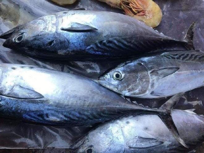 Kho cá ngừ cho thêm quả này đảm bảo ngon ngọt, chuẩn vị nhà hàng - 3