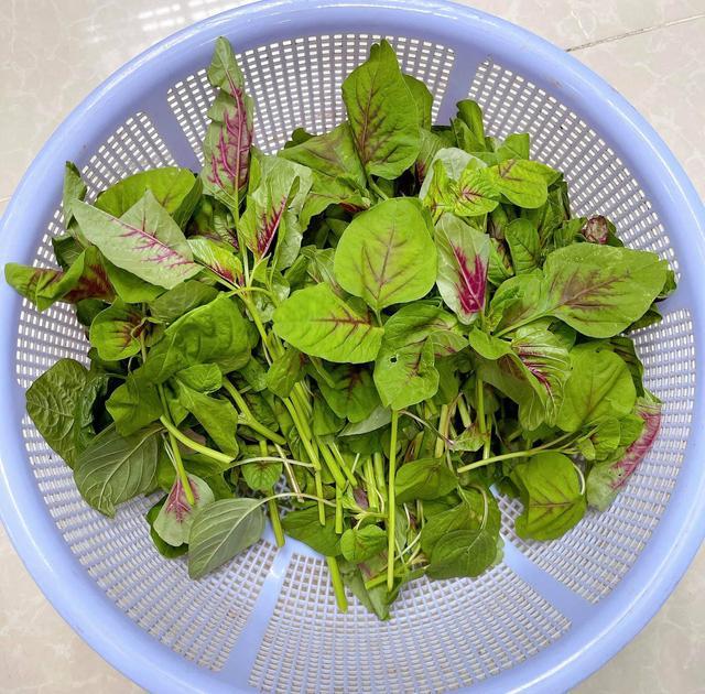 Cách cực mới bảo quản rau tươi để 1 tháng vẫn tươi rói, giữ nguyên dưỡng chất - 1