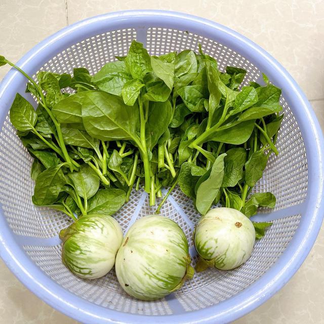 Cách cực mới bảo quản rau tươi để 1 tháng vẫn tươi rói, giữ nguyên dưỡng chất - 2