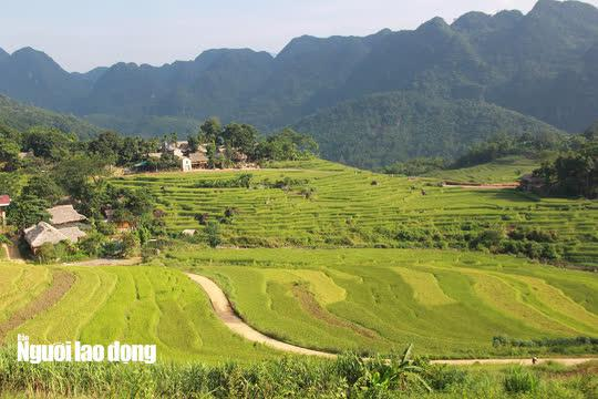 Vẻ đẹp mê mẩn mùa vàng ở Pù Luông - Sa Pa của xứ Thanh - 2