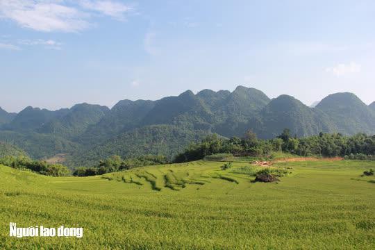 Vẻ đẹp mê mẩn mùa vàng ở Pù Luông - Sa Pa của xứ Thanh - 6