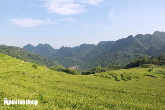 Vẻ đẹp mê mẩn mùa vàng ở Pù Luông - Sa Pa của xứ Thanh - 5