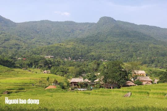 Vẻ đẹp mê mẩn mùa vàng ở Pù Luông - Sa Pa của xứ Thanh - 4
