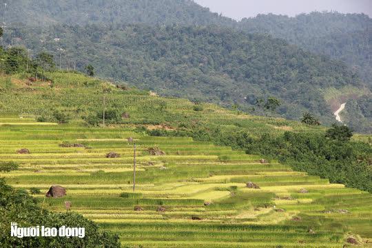 Vẻ đẹp mê mẩn mùa vàng ở Pù Luông - Sa Pa của xứ Thanh - 10