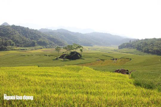 Vẻ đẹp mê mẩn mùa vàng ở Pù Luông - Sa Pa của xứ Thanh - 9