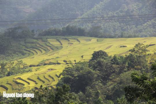 Vẻ đẹp mê mẩn mùa vàng ở Pù Luông - Sa Pa của xứ Thanh - 11