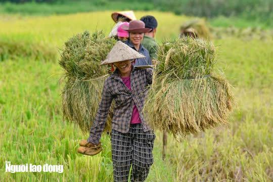 Vẻ đẹp mê mẩn mùa vàng ở Pù Luông - Sa Pa của xứ Thanh - 15